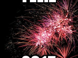 Feliz Ano Novo de 2015!!